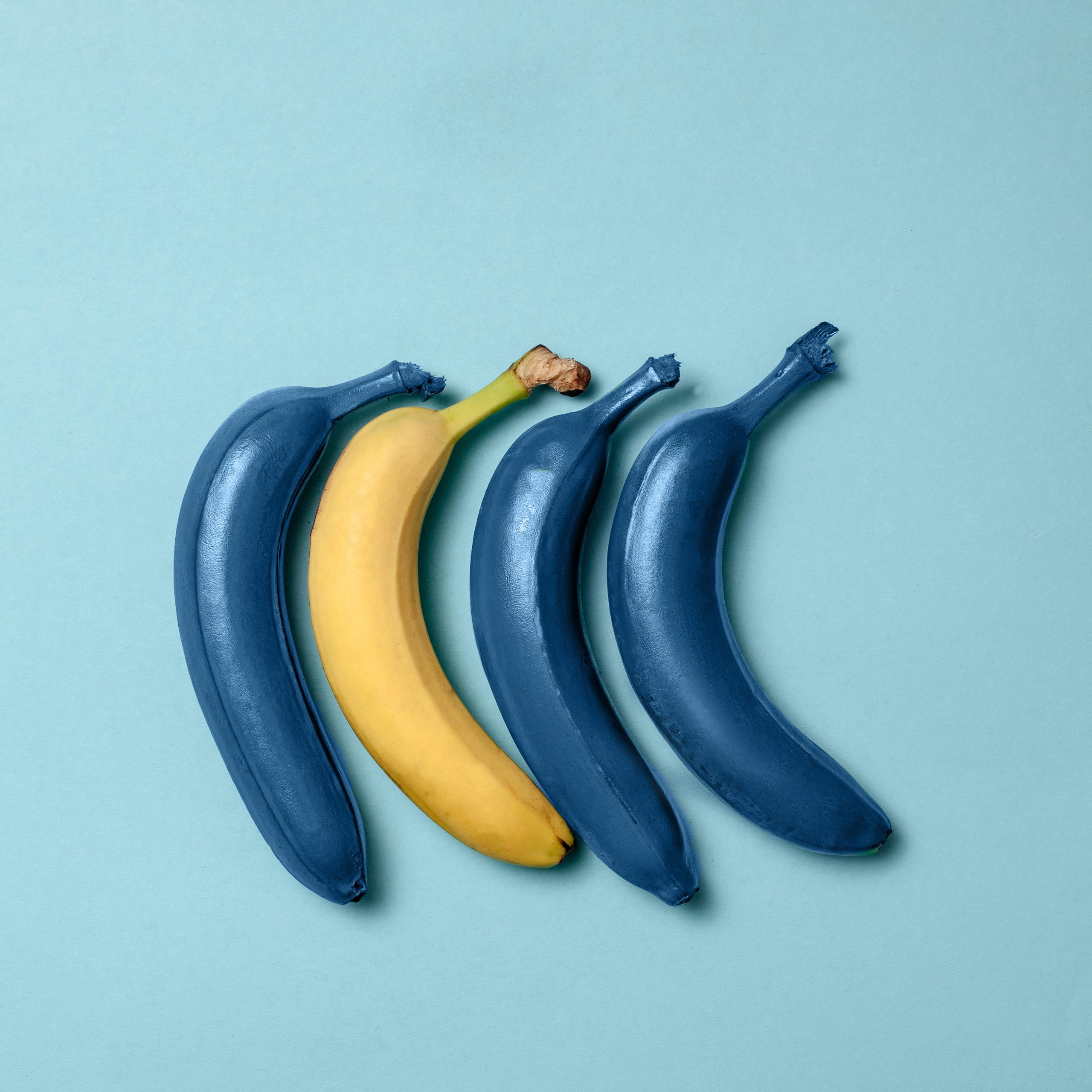 tres plátanos azules y uno amarillo